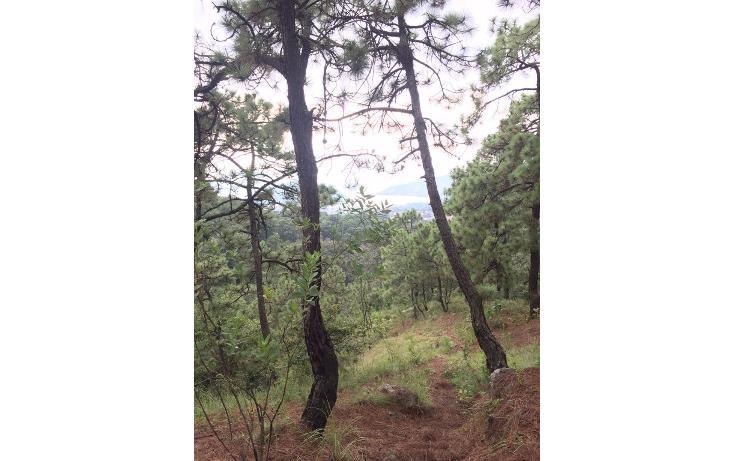 Foto de terreno habitacional en venta en  , valle de bravo, valle de bravo, méxico, 1698154 No. 01