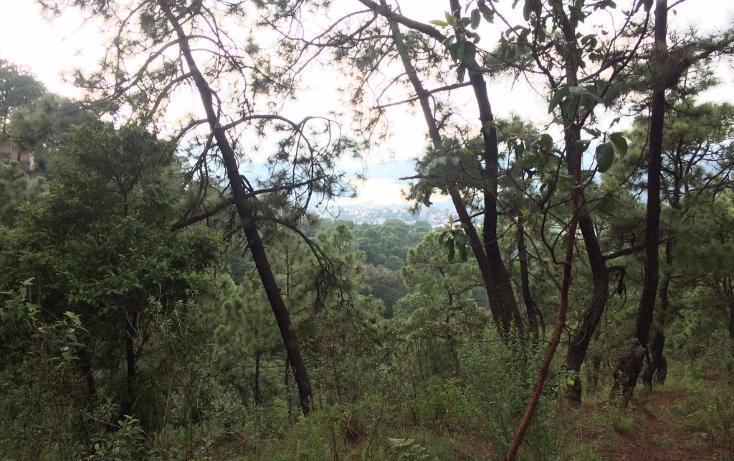 Foto de terreno habitacional en venta en  , valle de bravo, valle de bravo, méxico, 1698154 No. 04