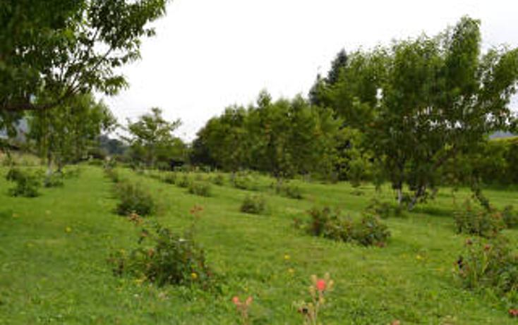 Foto de terreno habitacional en venta en  , valle de bravo, valle de bravo, méxico, 1798775 No. 04