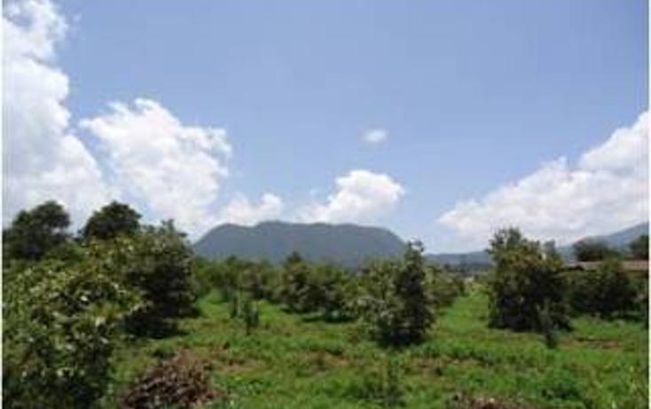 Foto de terreno habitacional en venta en  , valle de bravo, valle de bravo, méxico, 1825063 No. 05