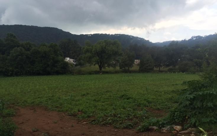 Foto de terreno habitacional en venta en  , valle de bravo, valle de bravo, méxico, 1872394 No. 03