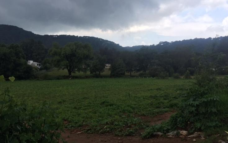 Foto de terreno habitacional en venta en  , valle de bravo, valle de bravo, méxico, 1872394 No. 04