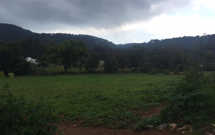 Foto de terreno habitacional en venta en  , valle de bravo, valle de bravo, méxico, 1872394 No. 07