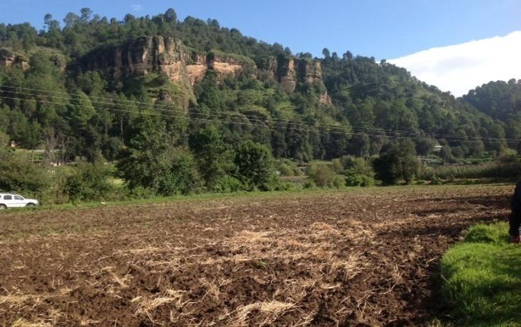 Foto de terreno habitacional en venta en  , valle de bravo, valle de bravo, méxico, 1872426 No. 06