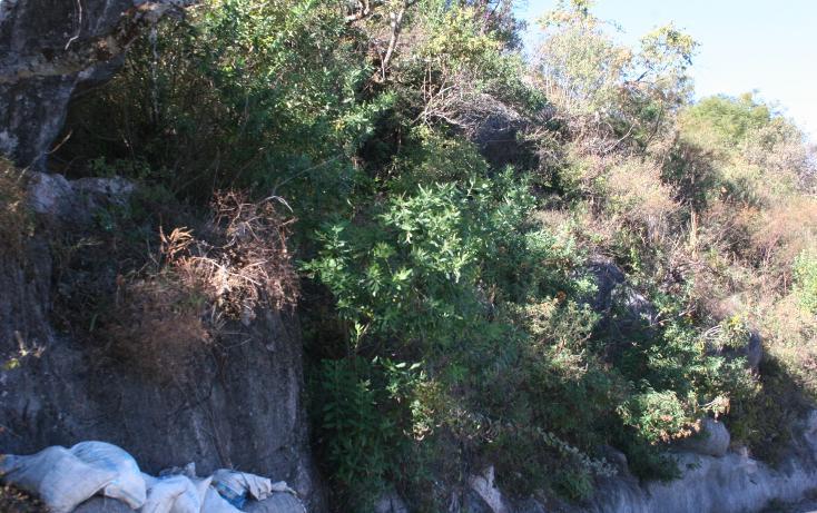 Foto de terreno habitacional en venta en el clavel , valle de bravo, valle de bravo, méxico, 1907973 No. 03