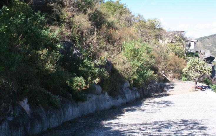 Foto de terreno habitacional en venta en el clavel , valle de bravo, valle de bravo, méxico, 1907979 No. 04