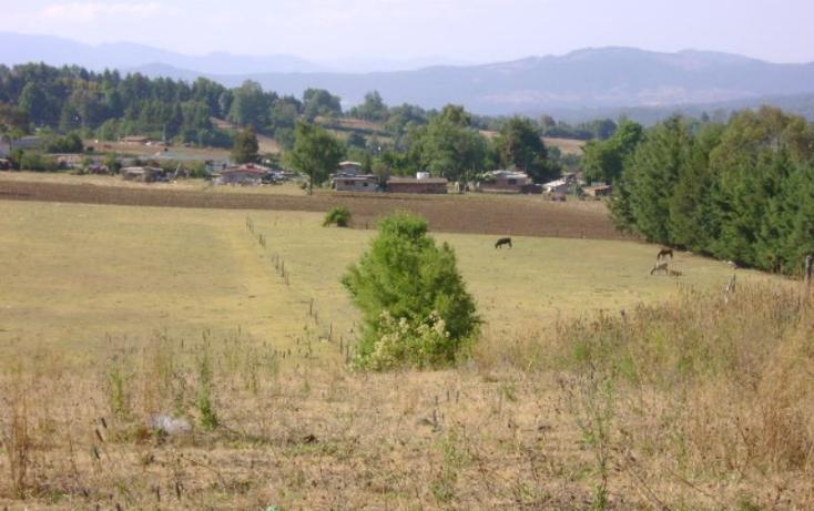 Foto de terreno habitacional en venta en cuadrilla de dolores , valle de bravo, valle de bravo, méxico, 2682281 No. 07