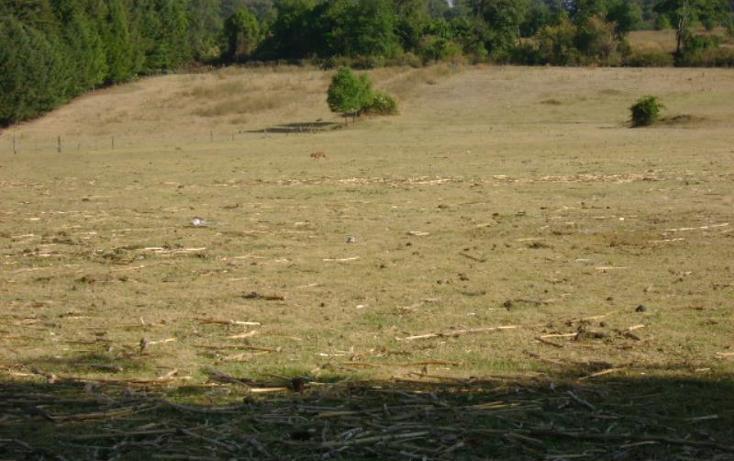 Foto de terreno habitacional en venta en cuadrilla de dolores , valle de bravo, valle de bravo, méxico, 2682281 No. 10