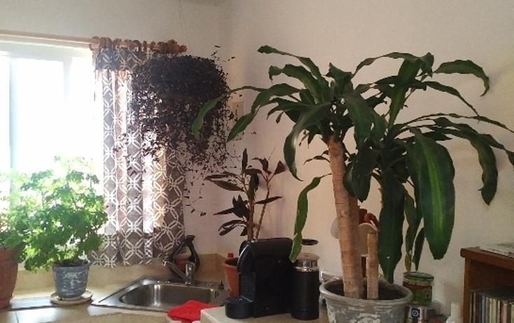 Foto de oficina en renta en  , valle de bravo, valle de bravo, méxico, 3427982 No. 03