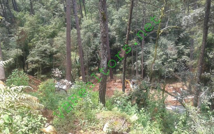 Foto de terreno habitacional en venta en  , valle de bravo, valle de bravo, méxico, 703379 No. 15