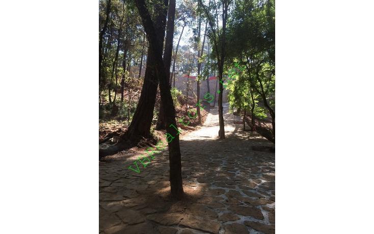 Foto de terreno habitacional en venta en  , valle de bravo, valle de bravo, méxico, 703379 No. 16