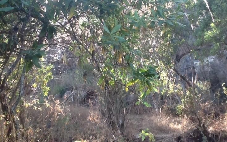 Foto de terreno habitacional en venta en  , valle de bravo, valle de bravo, méxico, 829477 No. 01