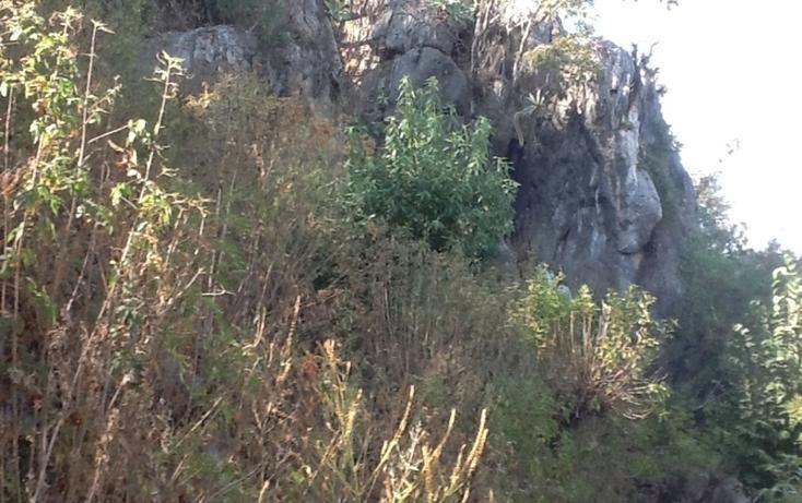 Foto de terreno habitacional en venta en  , valle de bravo, valle de bravo, méxico, 829477 No. 03