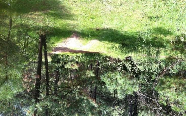 Foto de terreno habitacional en venta en  , valle de bravo, valle de bravo, méxico, 829485 No. 04