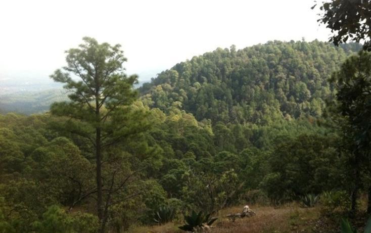 Foto de terreno habitacional en venta en  , valle de bravo, valle de bravo, méxico, 829485 No. 07