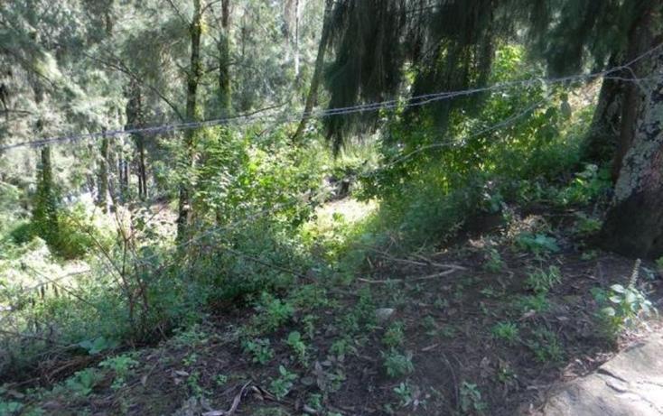 Foto de terreno habitacional en venta en  , valle de bravo, valle de bravo, méxico, 829517 No. 01