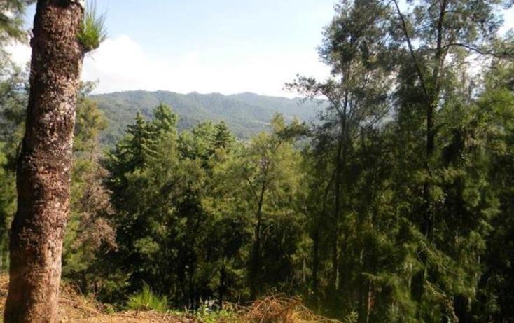 Foto de terreno habitacional en venta en  , valle de bravo, valle de bravo, méxico, 829517 No. 03