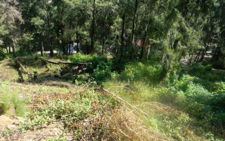Foto de terreno habitacional en venta en  , valle de bravo, valle de bravo, méxico, 829517 No. 06