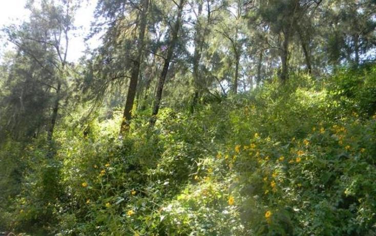 Foto de terreno habitacional en venta en  , valle de bravo, valle de bravo, méxico, 829517 No. 07