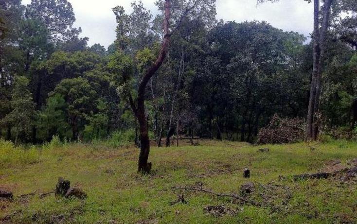 Foto de terreno habitacional en venta en  , valle de bravo, valle de bravo, méxico, 829531 No. 02