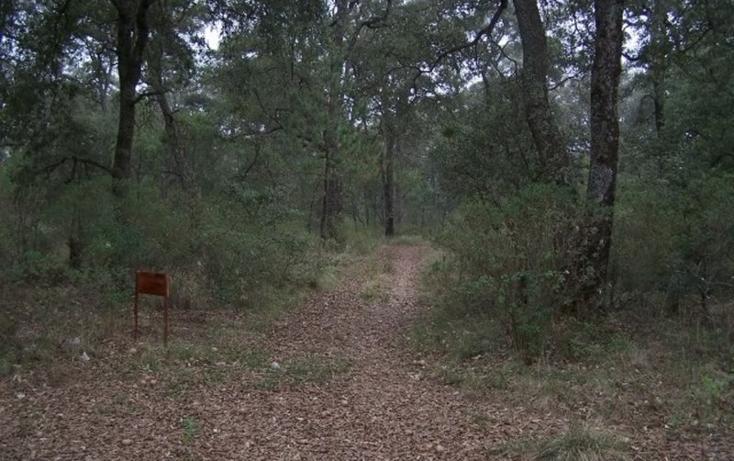 Foto de terreno habitacional en venta en  , valle de bravo, valle de bravo, méxico, 829531 No. 05