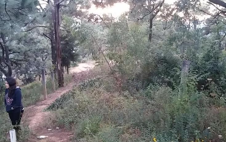 Foto de terreno comercial en venta en  , valle de bravo, valle de bravo, méxico, 853537 No. 02