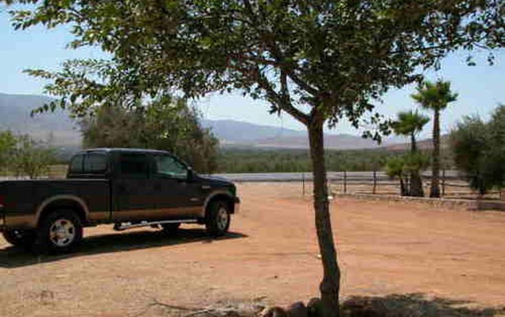 Foto de terreno habitacional en venta en  , valle de las palmas, tecate, baja california, 1067791 No. 02
