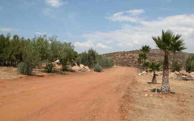 Foto de terreno habitacional en venta en  , valle de las palmas, tecate, baja california, 1067791 No. 05