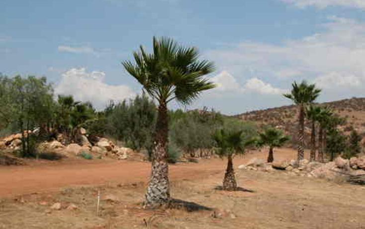 Foto de terreno habitacional en venta en  , valle de las palmas, tecate, baja california, 1067791 No. 07