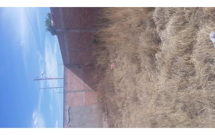 Foto de terreno habitacional en venta en  , valle de m?xico, durango, durango, 1966812 No. 03