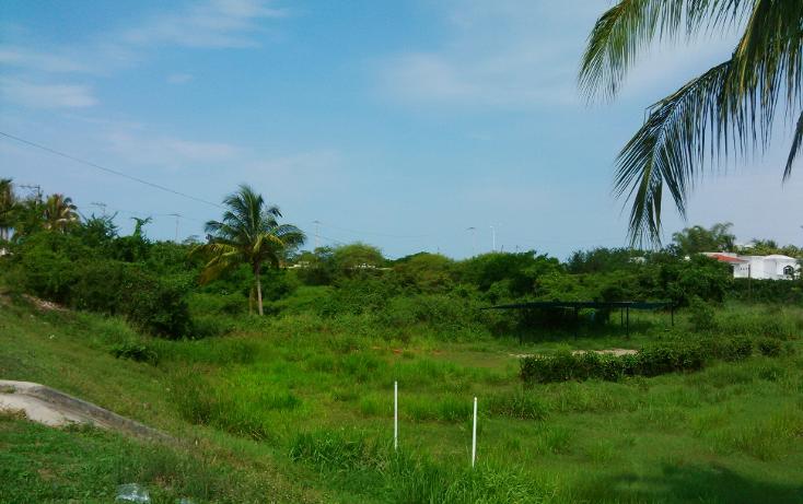 Foto de terreno comercial en venta en  , valle dorado, bahía de banderas, nayarit, 1252089 No. 12