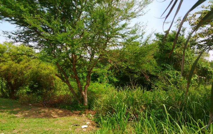 Foto de terreno comercial en venta en  , valle dorado, bahía de banderas, nayarit, 1252089 No. 13