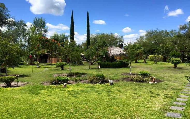 Foto de rancho en venta en  , valle florido, rioverde, san luis potosí, 1657897 No. 04