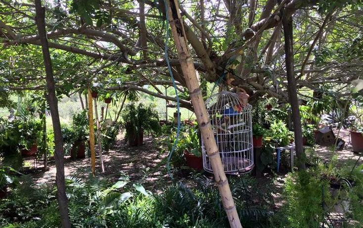 Foto de rancho en venta en  , valle florido, rioverde, san luis potosí, 1657897 No. 13