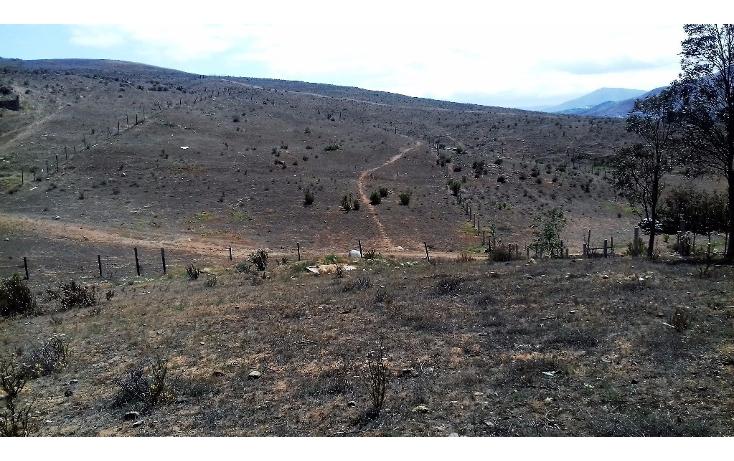 Foto de terreno habitacional en venta en  , valle redondo, tijuana, baja california, 2044969 No. 01