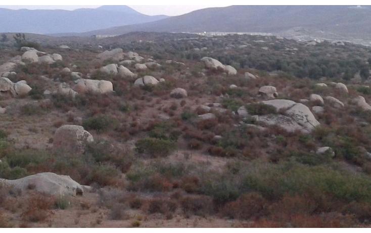 Foto de rancho en venta en  , valle san pedro, tijuana, baja california, 1330173 No. 05