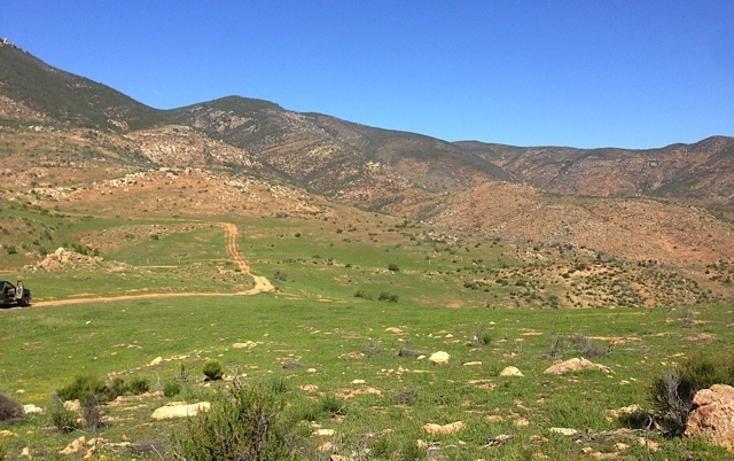 Foto de rancho en venta en  , valle san pedro, tijuana, baja california, 978305 No. 03