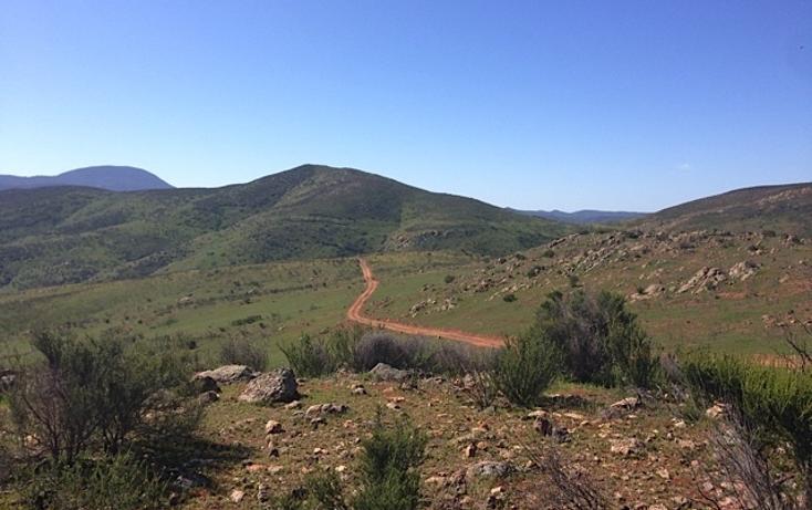 Foto de rancho en venta en  , valle san pedro, tijuana, baja california, 978305 No. 04