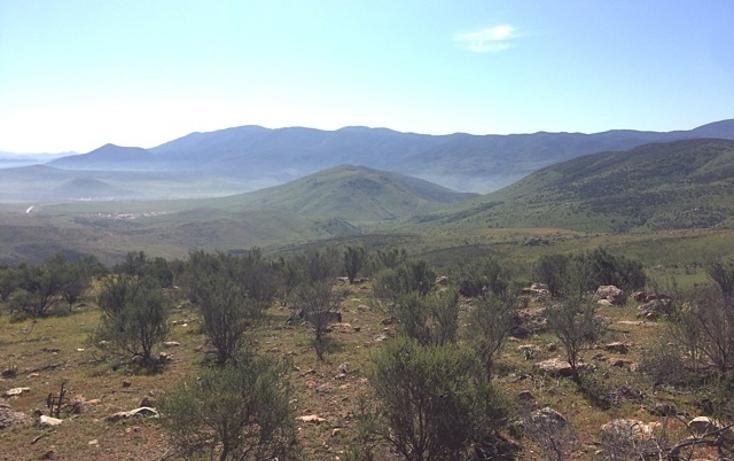 Foto de rancho en venta en  , valle san pedro, tijuana, baja california, 978305 No. 06