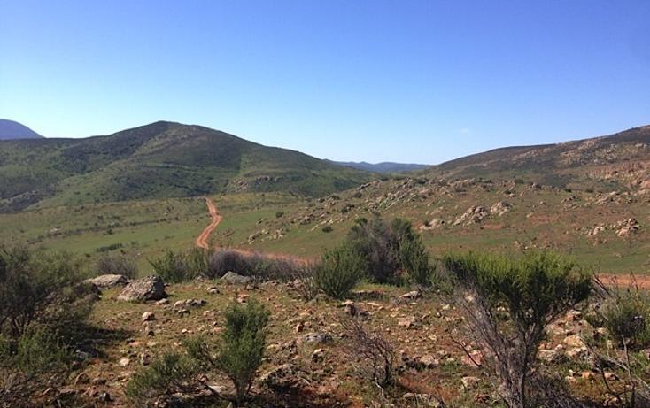 Foto de rancho en venta en  , valle san pedro, tijuana, baja california, 978305 No. 07