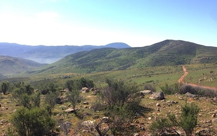 Foto de rancho en venta en  , valle san pedro, tijuana, baja california, 978305 No. 08