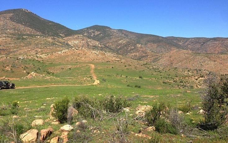 Foto de rancho en venta en  , valle san pedro, tijuana, baja california, 978305 No. 09