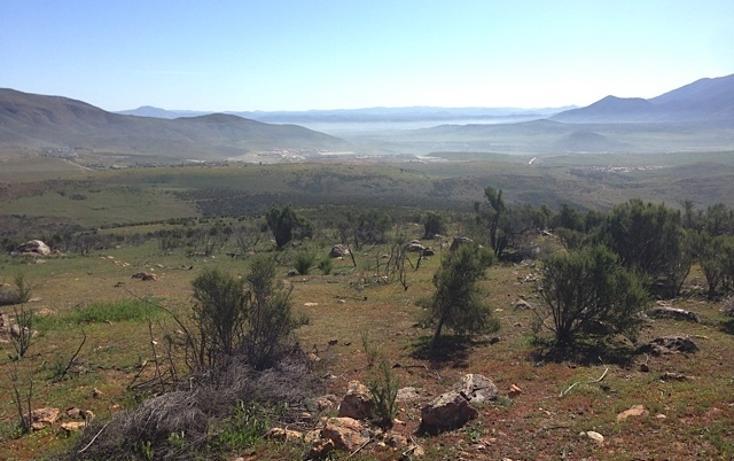 Foto de rancho en venta en  , valle san pedro, tijuana, baja california, 978305 No. 11