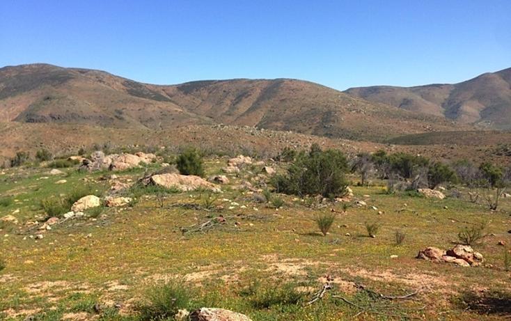 Foto de rancho en venta en  , valle san pedro, tijuana, baja california, 978305 No. 12