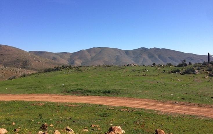 Foto de rancho en venta en  , valle san pedro, tijuana, baja california, 978305 No. 14
