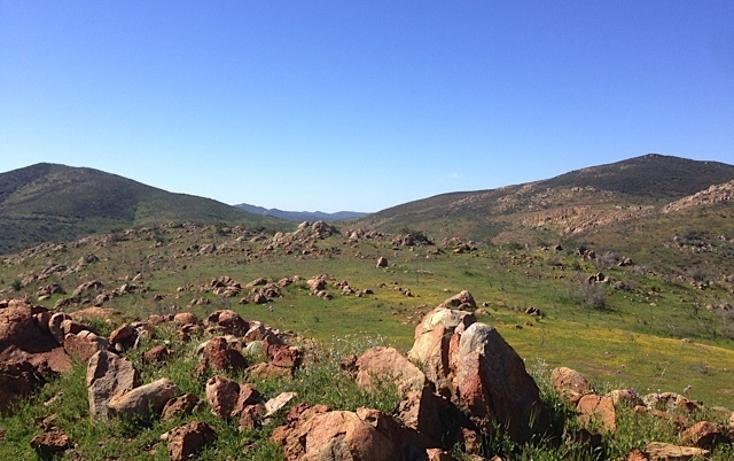 Foto de rancho en venta en  , valle san pedro, tijuana, baja california, 978305 No. 15