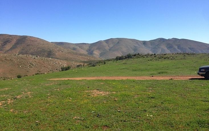Foto de rancho en venta en  , valle san pedro, tijuana, baja california, 978305 No. 17
