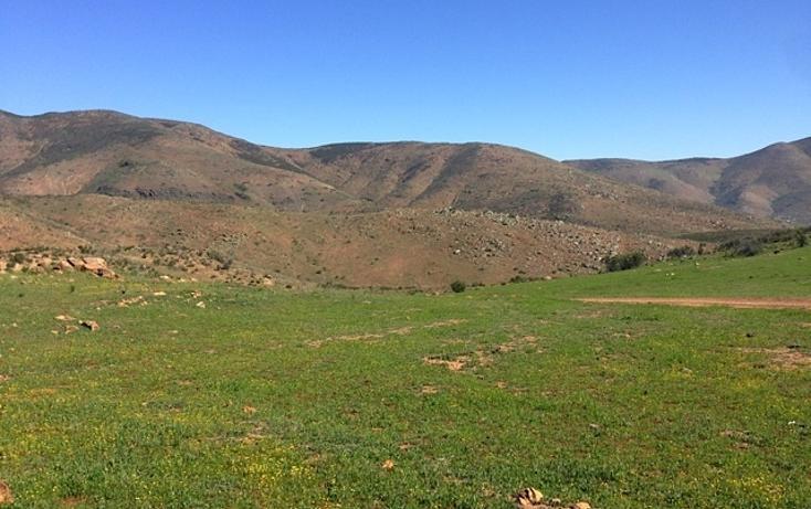 Foto de rancho en venta en  , valle san pedro, tijuana, baja california, 978305 No. 18