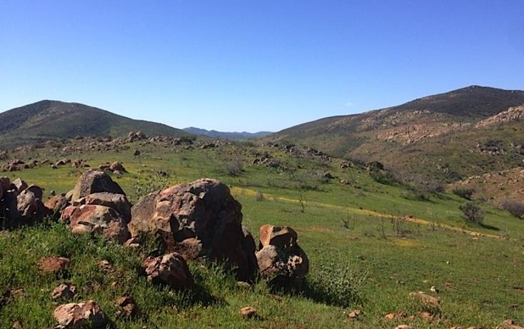 Foto de rancho en venta en  , valle san pedro, tijuana, baja california, 978305 No. 19