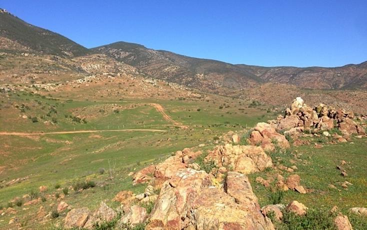 Foto de rancho en venta en  , valle san pedro, tijuana, baja california, 978305 No. 20